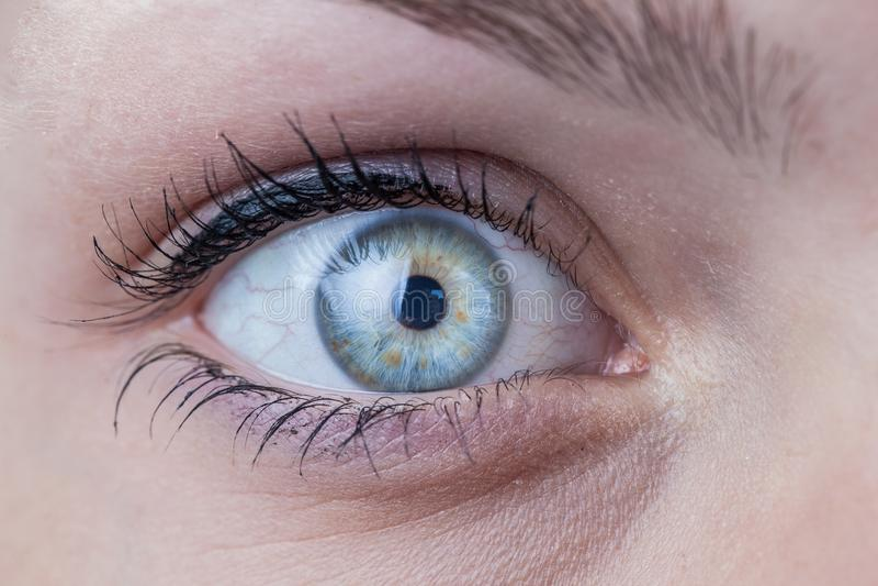 Primo piano di un occhio azzurro femminile fotografia stock