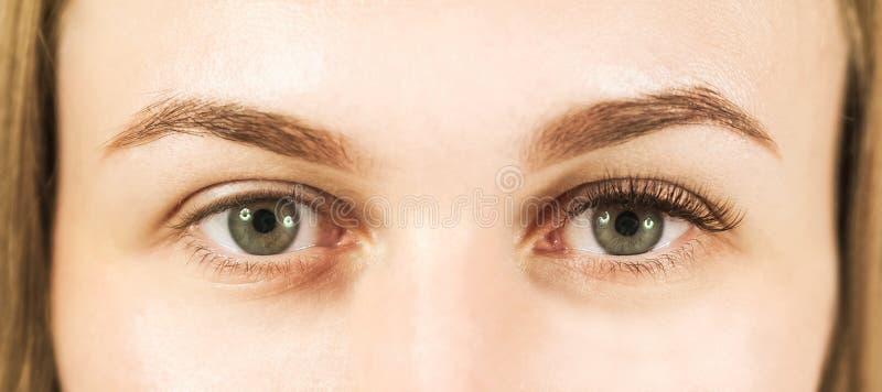 Primo piano di un occhio del ` s della ragazza con le sferze Il concetto di preoccuparsi per gli occhi, estensioni del ciglio nel fotografia stock
