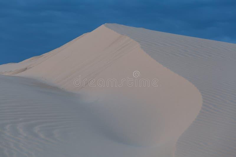 Primo piano di una cresta sulla duna di sabbia bianca fotografia stock libera da diritti