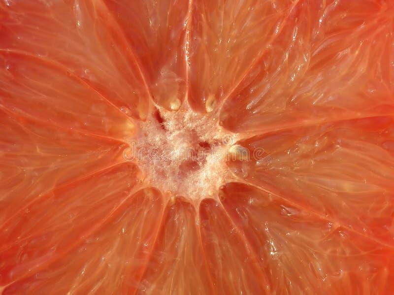 Primo piano di una frutta arancione divisa dell'uva fotografia stock libera da diritti