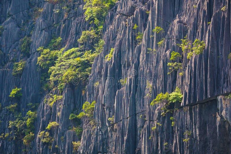 Primo piano di una montagna di morfologia carsica, struttura della roccia fotografia stock libera da diritti