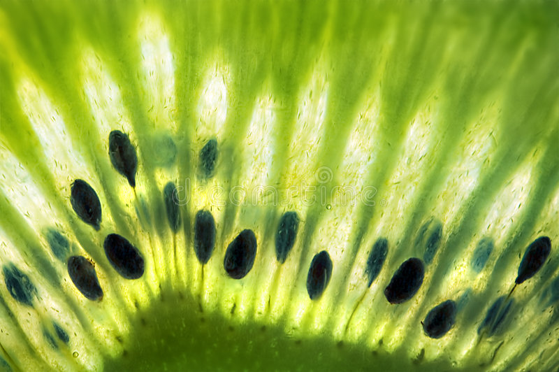 Primo piano a macroistruzione verde fresco della frutta di Kiwi con i semi immagine stock libera da diritti