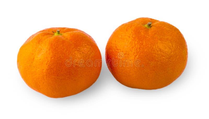 Primo piano maturo del mandarino due su un fondo bianco immagine stock