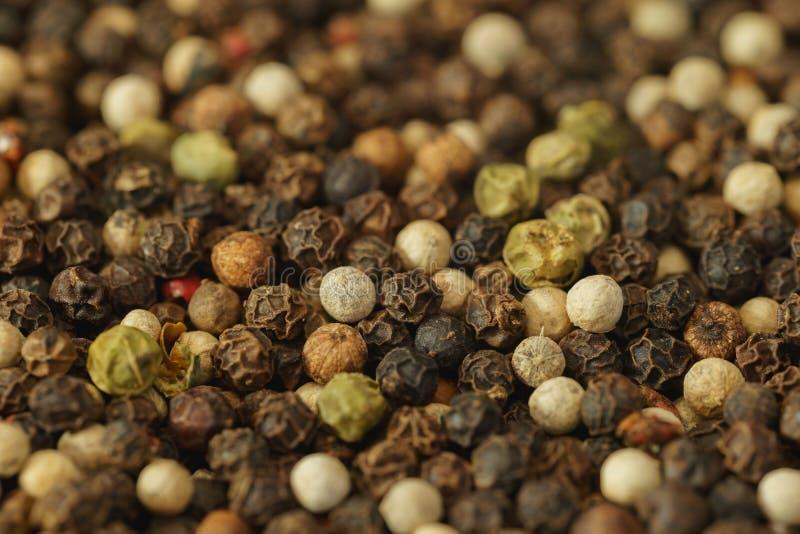 Primo piano misto dei granelli di pepe di colore fotografia stock