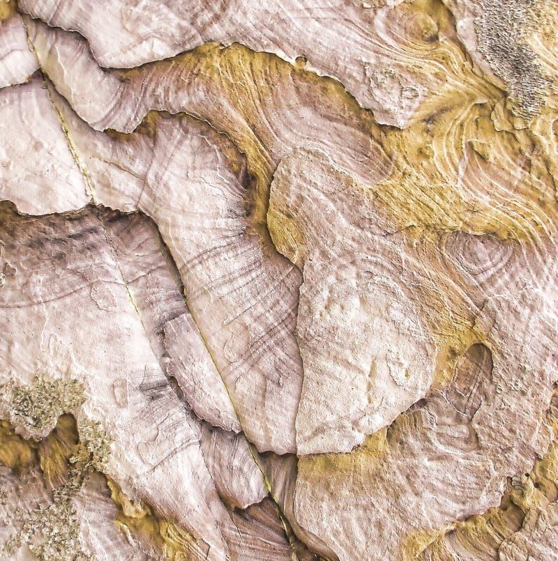 Primo piano naturale beige della roccia della fetta di struttura sottragga la priorità bassa fotografia stock libera da diritti