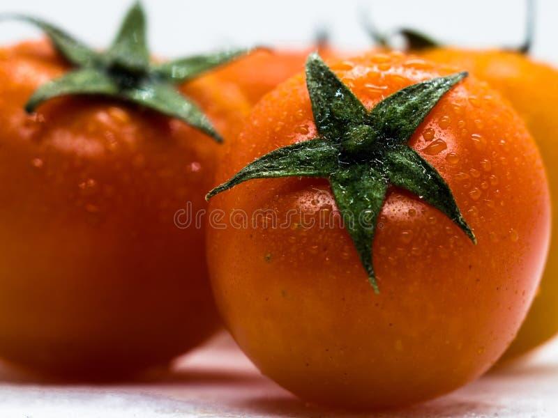 Primo piano o macro dei pomodori ciliegia su fondo bianco fotografie stock libere da diritti