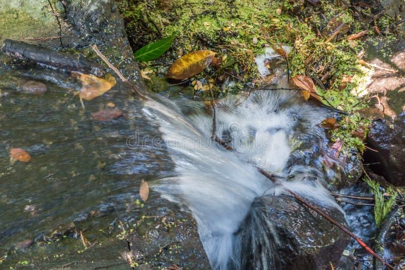 Primo piano precipitante dell'acqua immagini stock libere da diritti