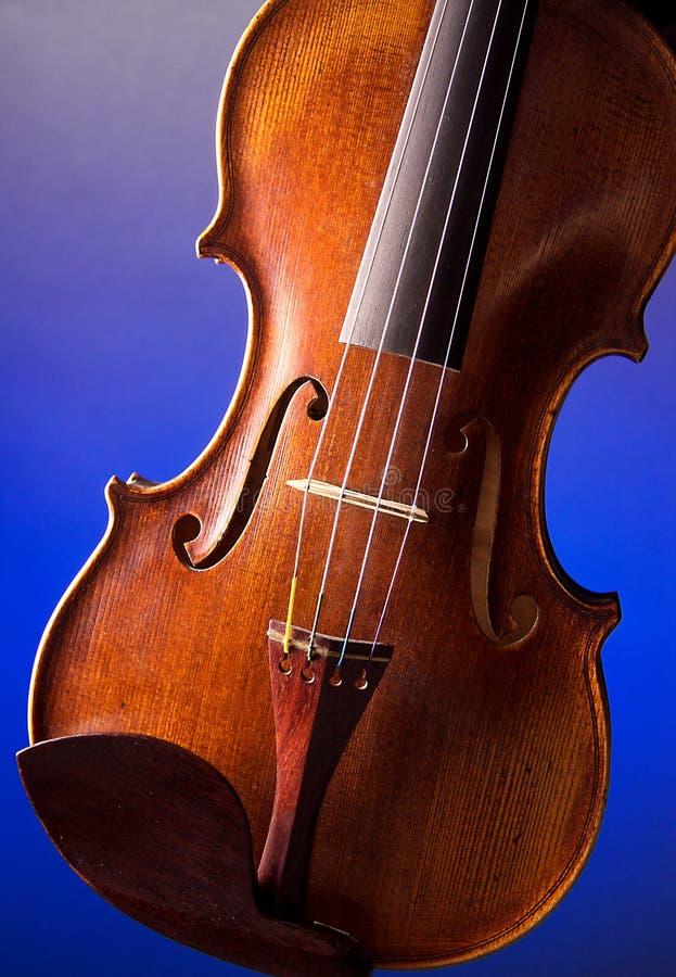 Primo piano professionale del violino immagini stock