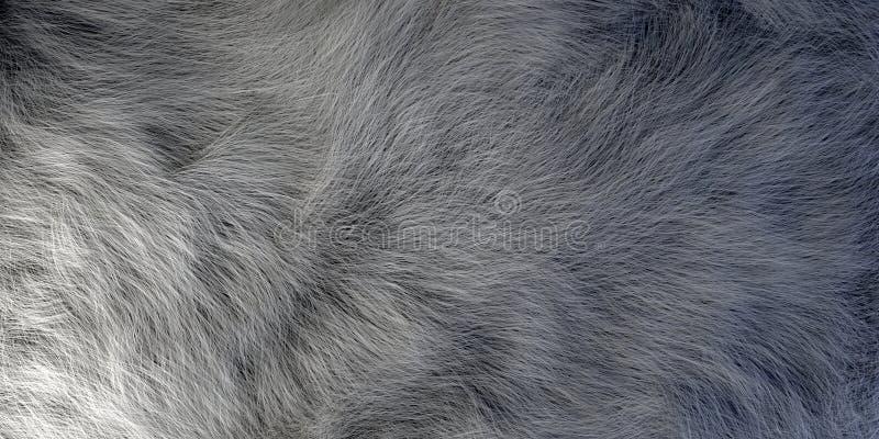 Primo piano sembrante realistico della pelliccia del pelo illustrazione vettoriale
