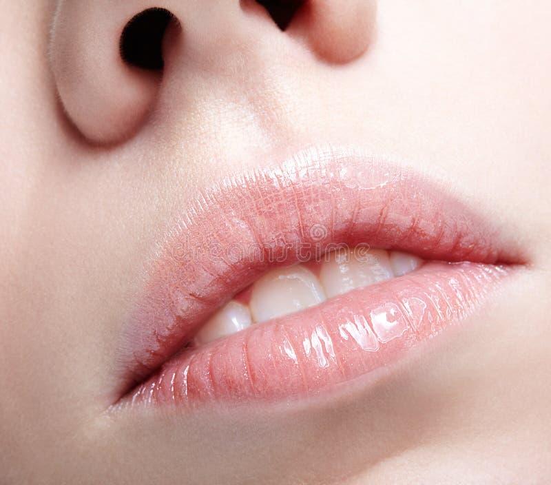 Primo piano sparato del fronte femminile umano Donna con trucco grassottello rosa delle labbra fotografia stock libera da diritti