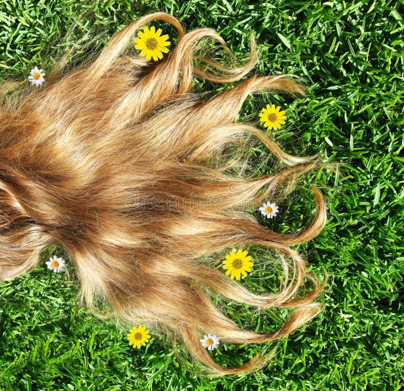 Primo piano su bei capelli immagini stock