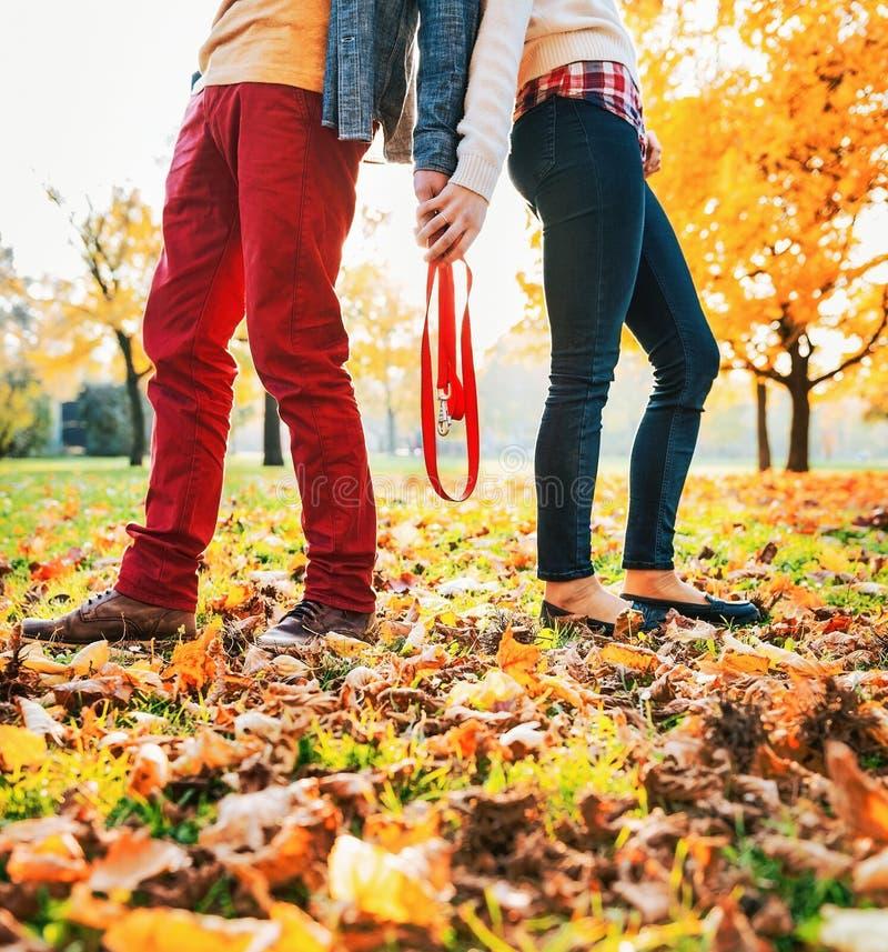 Primo piano sul giovane guinzaglio della tenuta delle coppie insieme nel parco di autunno fotografia stock libera da diritti