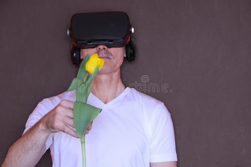 Primo piano - un uomo con i vetri delle elasticit? di realt? virtuale un tulipano immagine stock libera da diritti