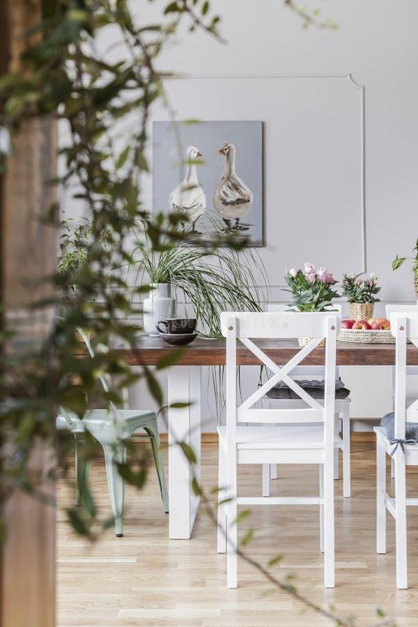 Primo piano vago di una pianta con una sedia accanto ad un tavolo da pranzo nei precedenti Foto reale di un interno della sala da immagine stock