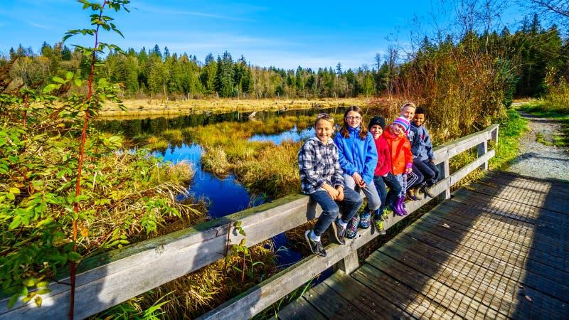 Primos que sentam-se em uns trilhos da ponte nas fugas de pantanais da angra de Silverdale perto do Columbia Britânica da missão, imagem de stock royalty free