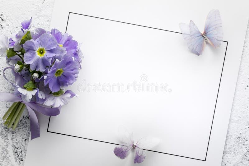 Primulablomma på pappers- kort royaltyfria bilder