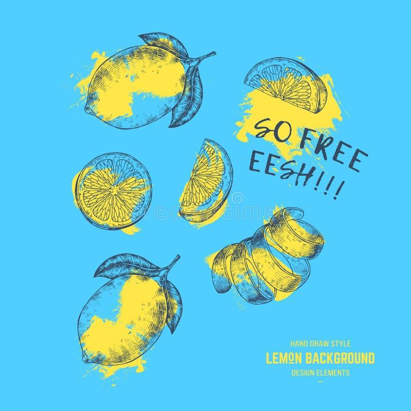 Prin di estate dei limoni Frutti freschi del limone illustrazione di stock