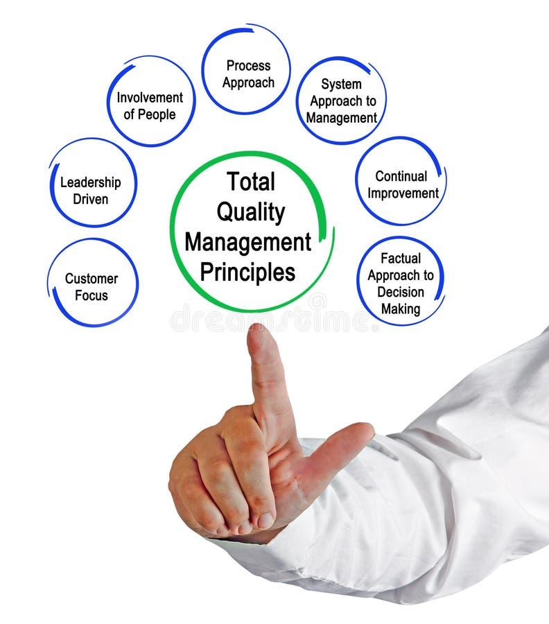 Princípios de gestão da qualidade total imagens de stock