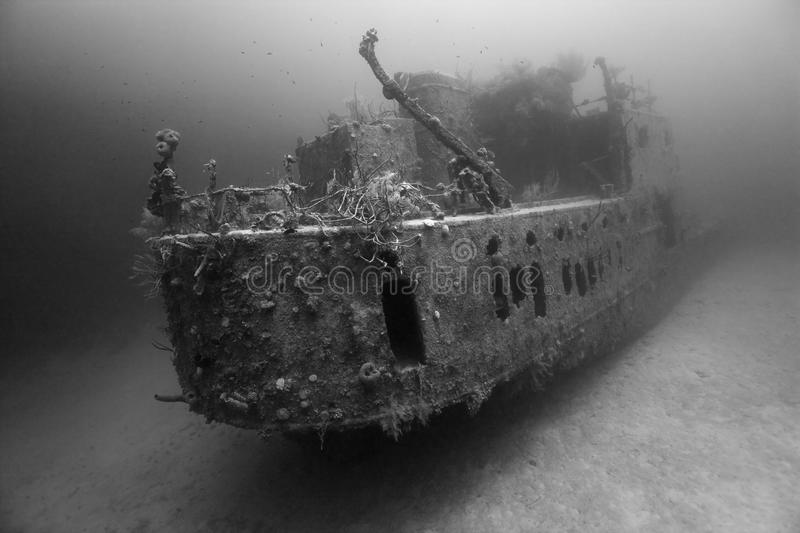 Prince Albert wreck in black and white royalty free stock images