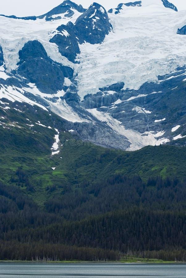 Prince William Sound, фьорд коллежа, Аляска стоковые изображения rf