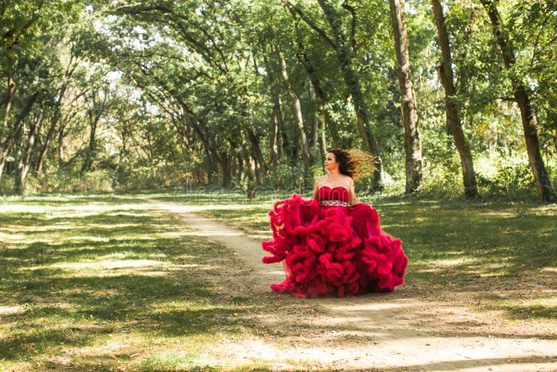 Princesa com a coroa no vestido vermelho nebuloso fotos de stock