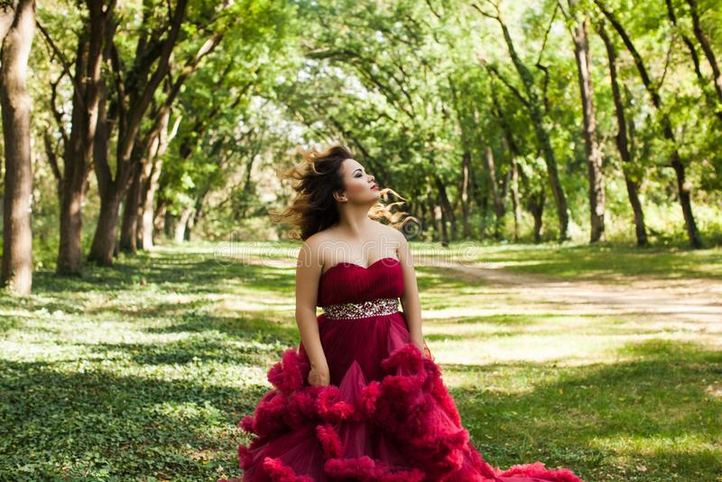 Princesa com a coroa no vestido vermelho nebuloso imagem de stock royalty free