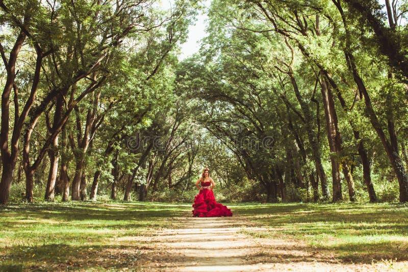 Princesa com a coroa no vestido vermelho nebuloso fotos de stock royalty free