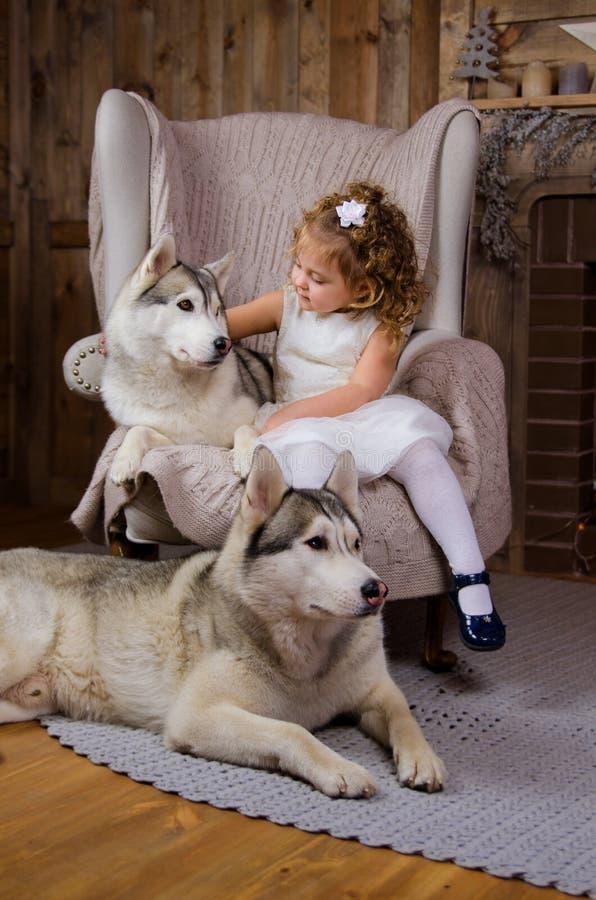 Princesa pequena com cão de puxar trenós fotografia de stock