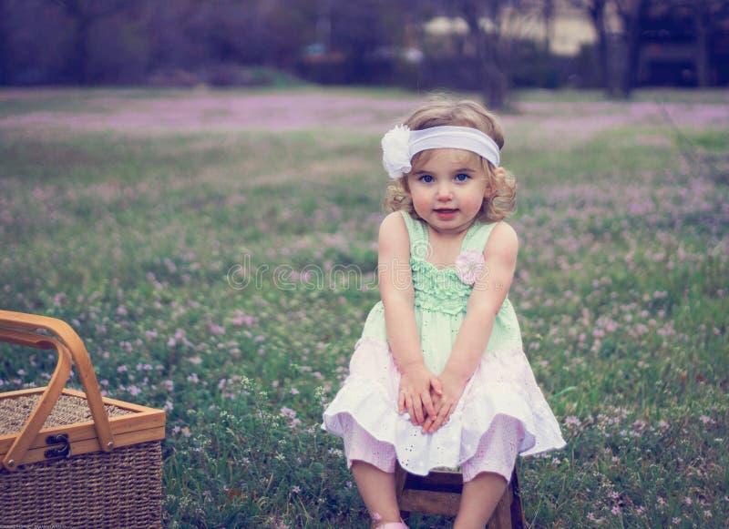 Princesa Picnic fotografía de archivo