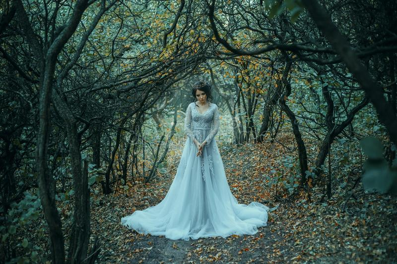 Princess in the a grim autumn garden. A brunette girl, with a royal hairdo in a luxurious, silver dress. The background is a grim autumn. Artistic Photography stock images
