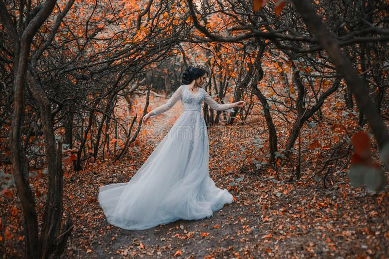 Princess in the a grim autumn garden. A brunette girl, with a royal hairdo in a luxurious, silver dress. The background is a grim autumn. Artistic Photography royalty free stock images