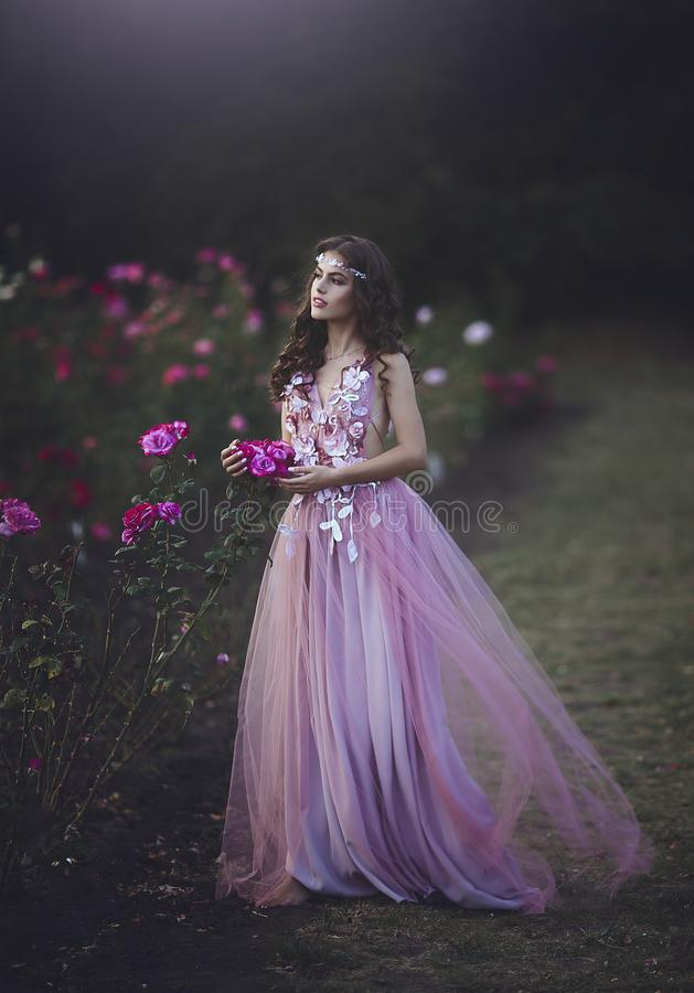 Princess in a long pink dress walking on the rosary. Young beautiful girl in a fabulous dress among the flowers. royalty free stock image