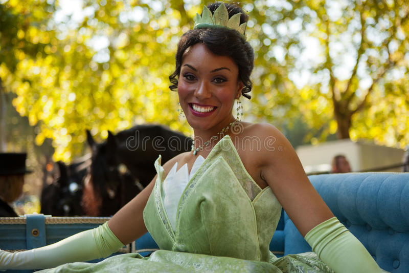 princess tiana royaltyfri bild