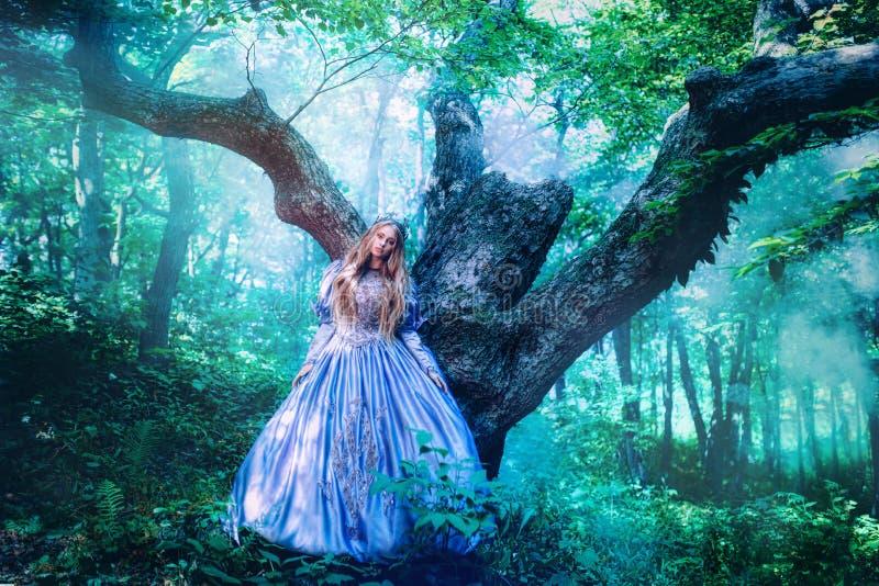 Princess w magicznym lesie obraz stock