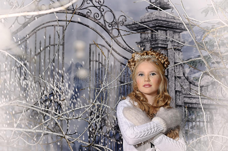 Princesse d'hiver photo stock