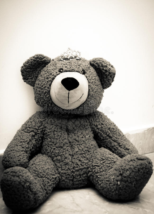 Princesse d'ours de nounours image libre de droits