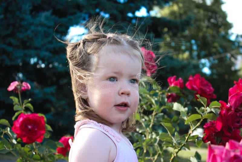 Princesse fière photo libre de droits