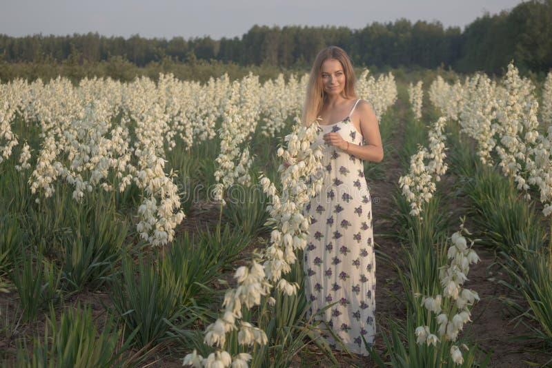 Princesse Jeune belle jolie femme posant dans la robe de luxe de longue soirée contre des buissons avec les fleurs blanches photo stock