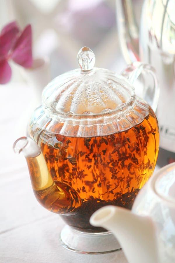 Princesse Tea Manor photographie stock libre de droits