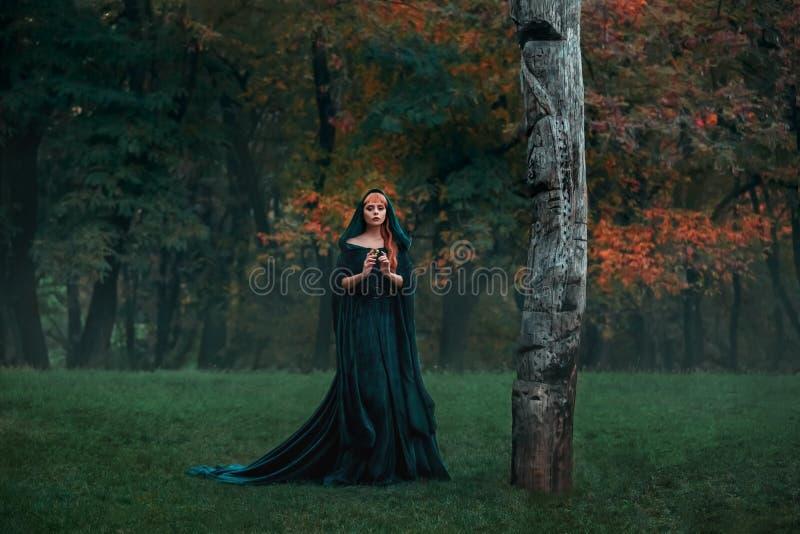 Princesse triste avec de longs cheveux blonds rouges habillés dans une manteau-robe royale de velours cher vert vert avec un préc photographie stock libre de droits