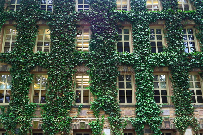 Princeton University Ivy Wall. Old Nassau Hall, the oldest building with ivy leave covered walls at Princeton University in Princeton, Mercer County, New Jersey stock photos