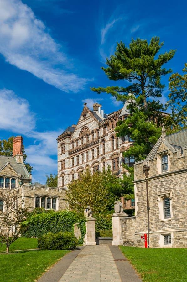 Princeton University. One of famous American universities stock photography