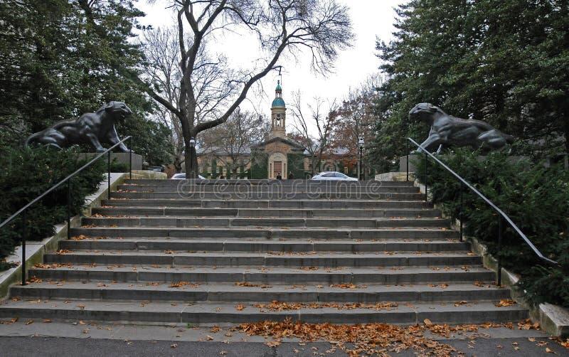 The Princeton University`s iconic tiger statues. Princeton University is a Private Ivy League University in New Jersey. PRINCETON, NJ -15 NOVEMBER 2011: the stock image