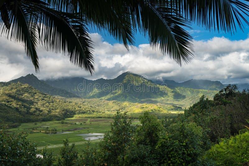 从Princeville的Hanalei谷俯视考艾岛 免版税库存照片