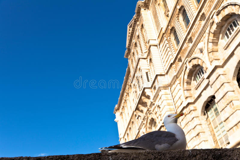 Principality of Monaco royalty free stock images