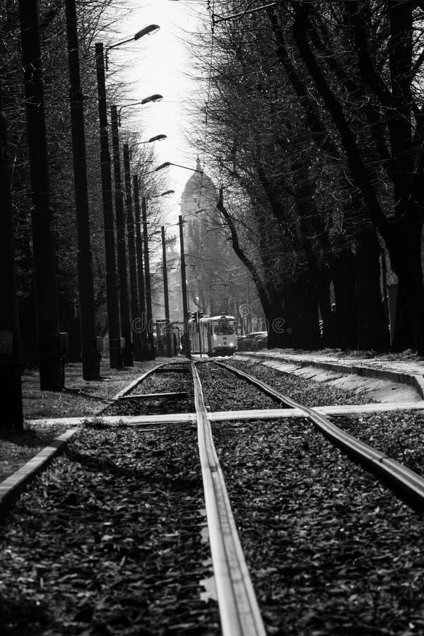 Principaux lignes de tram et courriers de lampe en noir et blanc photos libres de droits