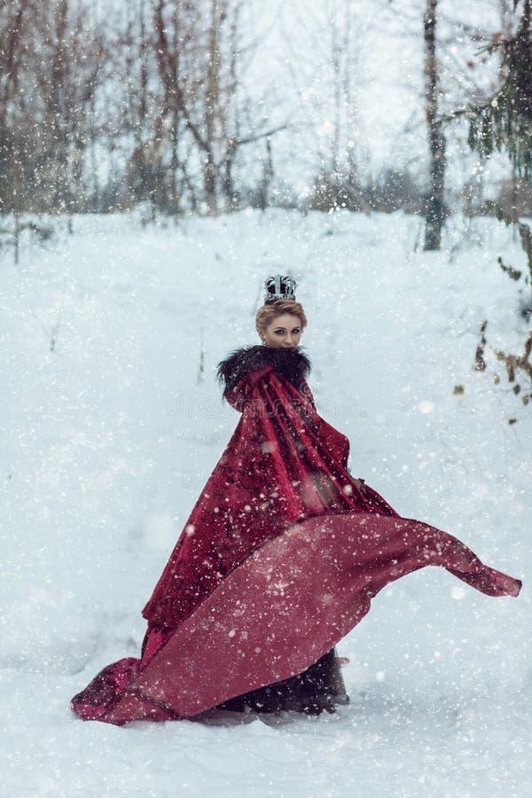 Principessa in un mantello rosso nella neve fotografia stock