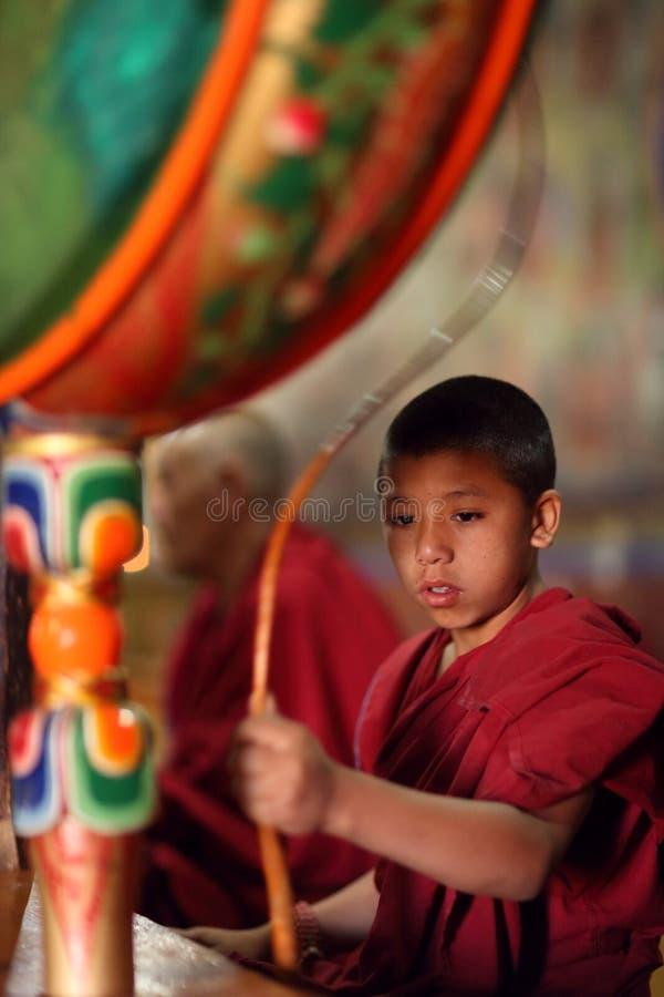 Principiante budista, Ladakh fotografia de stock