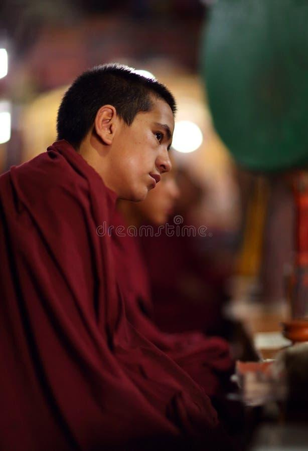 Principiante budista, Ladakh foto de stock