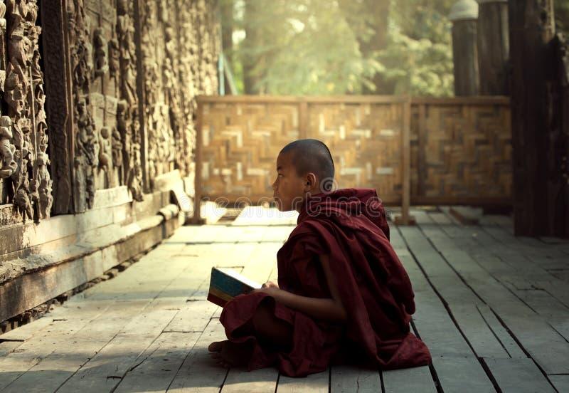 Principiante Burma imagem de stock royalty free